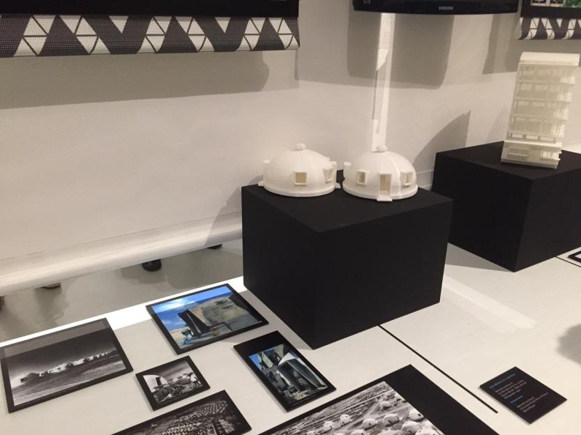 Africa Exhibit Triennale01